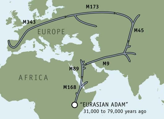 Map of genetic journey
